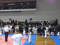Campionato Italiano kumitè CKI-WUKF RSM 02-02-2014