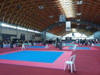 Finale Campionato Italiano WTKA Maggio 2013 Rimini