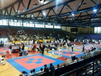 International Cup FEKDA Rimini 16-05-2015