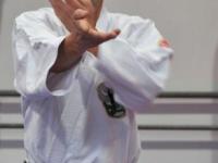 Gallery: Stage Shihan Fred van de Vijver RSM 2012