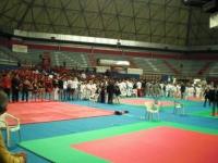 W.T.K.A Campionato Italiano Montacatini Marzo 2010